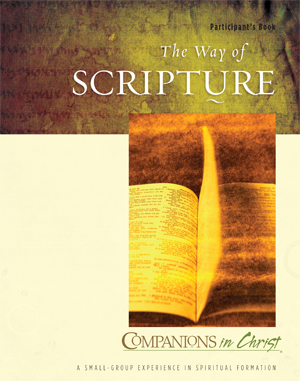 The Way of Scripture Participant's Book